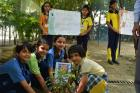 Mission Green Schools